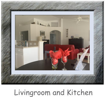 Livingroom and Kitchen